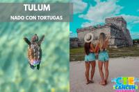 Tulum y Snorkel con Tortugas